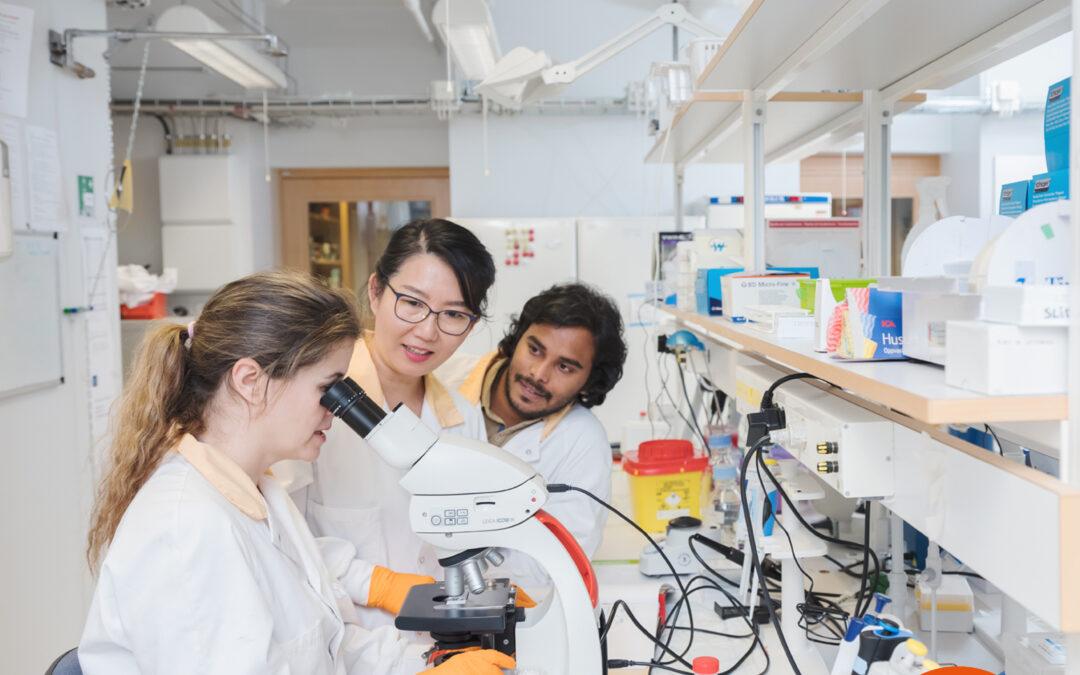 Utökad möjlighet att söka forskarmånader för kliniskt verksamma forskare i Västsverige!